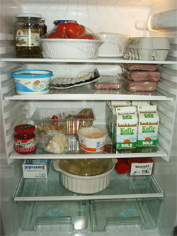 The fridge with a gun turret